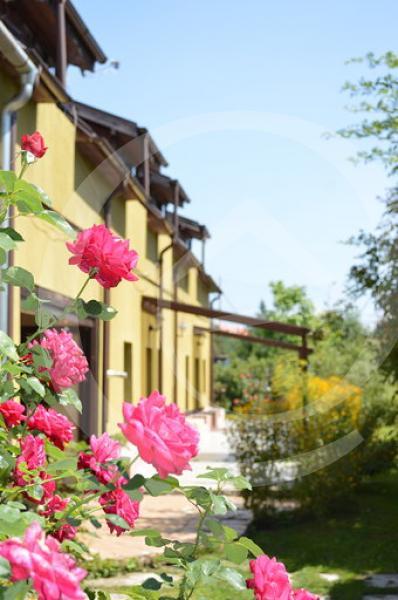 Vila Casa de inchiriat, Brasov, Brasov